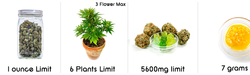 recreational cannabis possession limits in alaska 2020