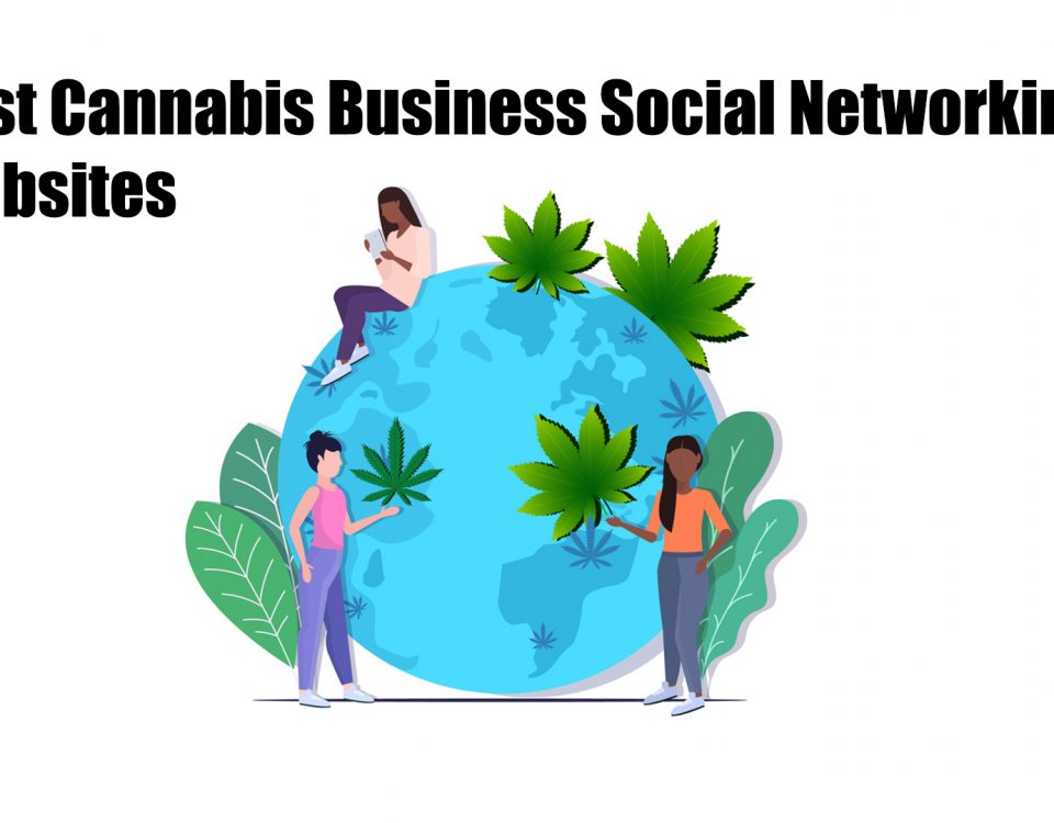 best cannabis business social network websites in 2021